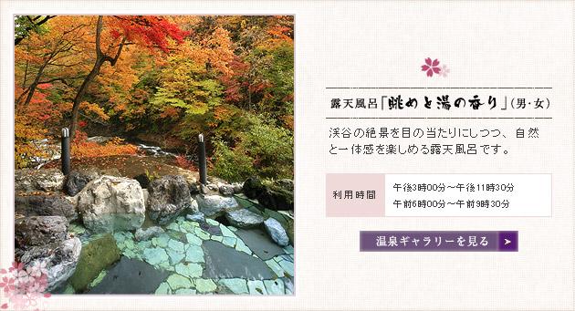 露天風呂「眺めと湯の香り」(男・女)